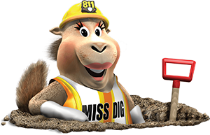 MISS DIG System, Inc.